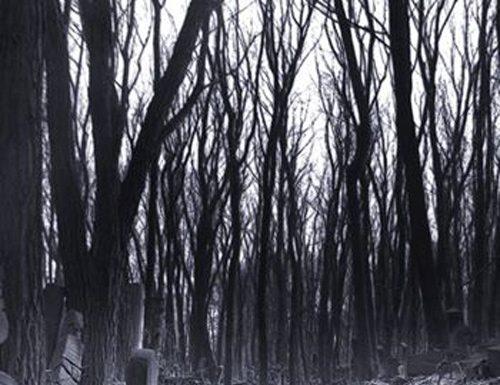 Yakacık'ta Akşamdan Sonra Bir Mezarlık Alemi