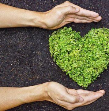 organik-ürün-tercih-etmek-için-5-neden